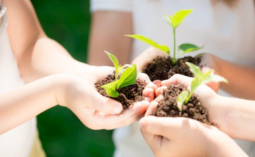 Déménager tout en préservant l'environnement